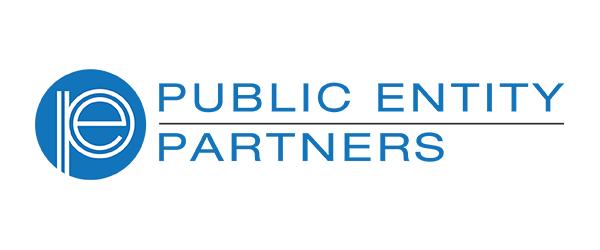 public-entity